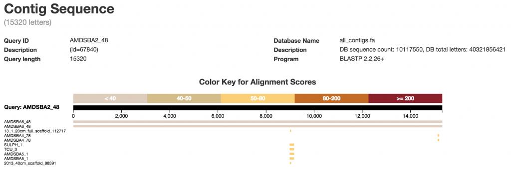 BLAST alignment score visualization.